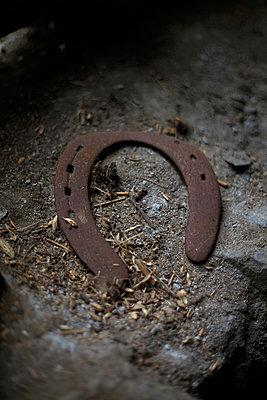 Horse shoe - p1028m2108530 by Jean Marmeisse