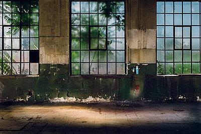 Fensterfront - p1088m1143799 von Martin Benner