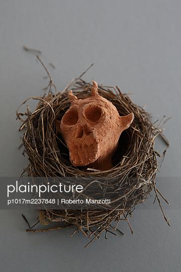 Nest with devil's head - p1017m2237848 by Roberto Manzotti