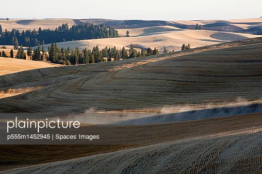 Rolling rural landscape, Palouse, Washington, United States