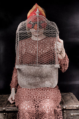 The cage - p1543m2204120 by Sophia Snadli