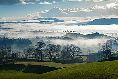 Misty Landscape in Winter, near Windermere, Lake District National Park, Cumbria, England - p651m2006966 by Tom Mackie