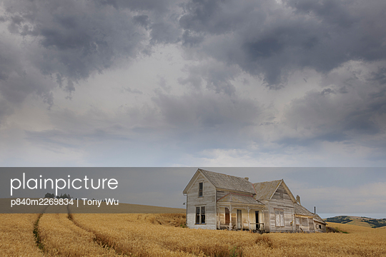 Abadoned house in middle of a wheat field. Palouse farming area, southeatern Washington, USA, August - p840m2269834 by Tony Wu