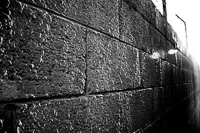 p1072m941456 von Tal Paz-Fridman photography