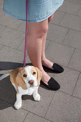 PET - p045m1139060 by Jasmin Sander
