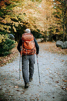 A hiker with a backpack walks through fall foliage in the Maine woods - p1166m2106814 by Cavan Images
