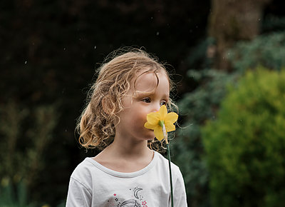 young girls standing in the rain smelling a daffodil in the garden - p1166m2137882 by Cavan Images