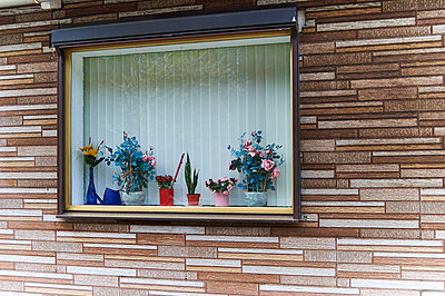 Fenster - p851m925238 von Lohfink