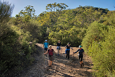 Hikers on bush trail - p1125m1042661 by jonlove