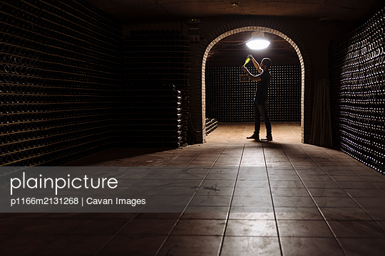 Man in wine cellar checking bottle on light - p1166m2131268 by Cavan Images