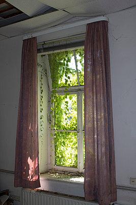 Vergessenes Fenster - p252m2020648 von Jens Dommermuth