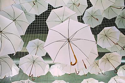 Dach aus Regenschirmen - p606m2008384 von Iris Friedrich