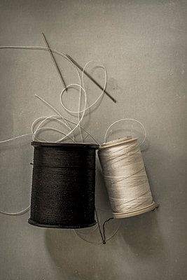 Needle and thread - p1228m1150251 by Benjamin Harte