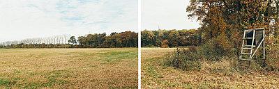Waldlichtung - p1205m1020937 von Annet van der Voort