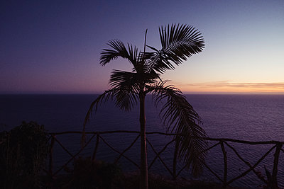 Portugal, Madeira, Sunset - p1600m2175633 by Ole Spata