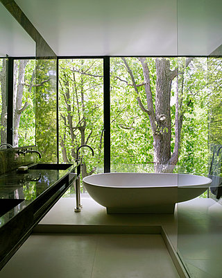 Freestanding bathtub in bathroom of Canadian home - p855m908971 by Richard Powers
