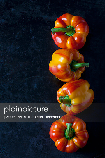 Row of four tiger bell peppers on dark metal - p300m1581518 von Dieter Heinemann