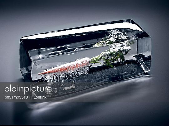 Gemüse im Eis - p851m955131 von Lohfink