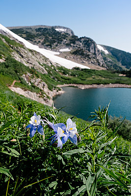 St Mary's Glacier - p1262m1476992 by Maryanne Gobble