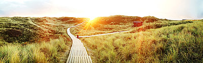 Sunrise on Sylt, Germany - p300m1009576 by Matthias Buchholz