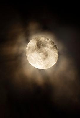 Full moon beyond trees - p1418m2164551 by Jan Håkan Dahlström