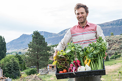A man holds a crate of freshly harvested produce at an organic farm. - p343m1184558 by Alasdair Turner