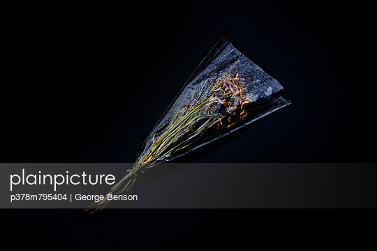 Crumpled carnations in cellophane - p378m795404 by George Benson