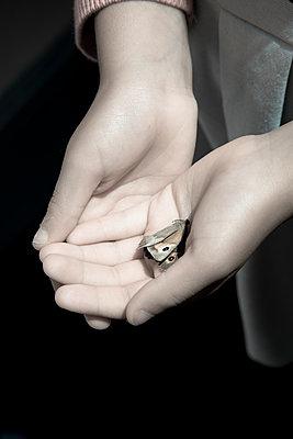Little girl holding a dead butterfly - p1170m1090749 by Bjanka Kadic