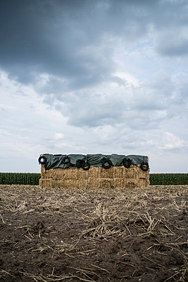 Bales of straw - p403m917614 by Helge Sauber