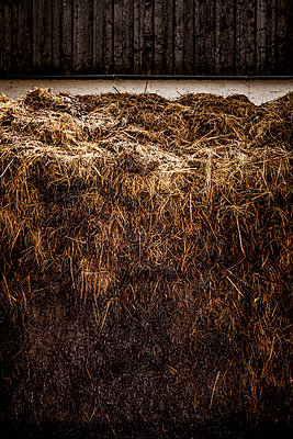 Heap of dung - p248m1051752 by BY