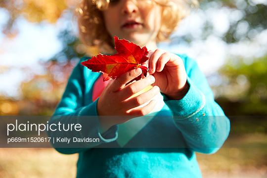 p669m1520617 von Kelly Davidson