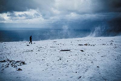 Snow storm - p1062m953968 by Viviana Falcomer