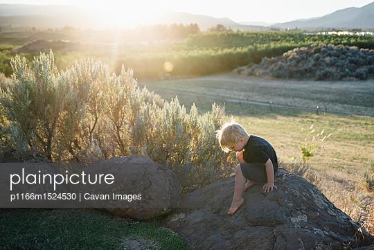 p1166m1524530 von Cavan Images
