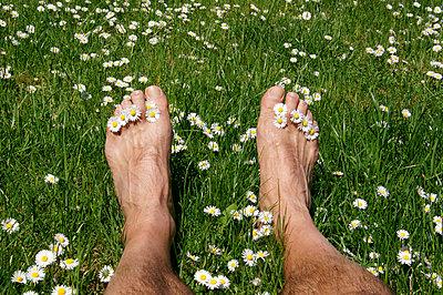Mann mit Gänseblümchen - p1620075 von Beate Bussenius