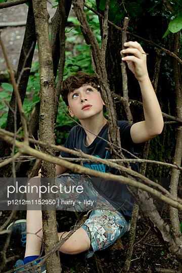 Junge im Wald baut eine Hütte - p1212m1152950 von harry + lidy