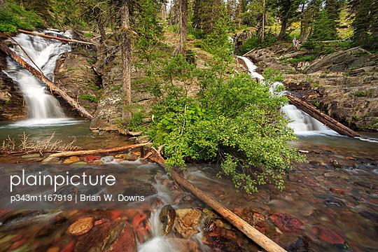 p343m1167919 von Brian W. Downs