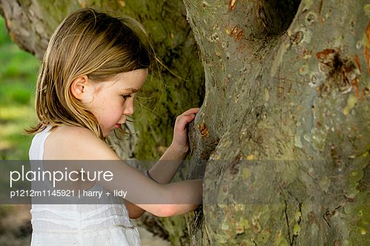 Mädchen untersucht ein Loch im Baum - p1212m1145921 von harry + lidy