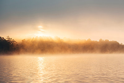 Morning sun and fog at Chandos Lake - p1065m982628 by KNSY Bande