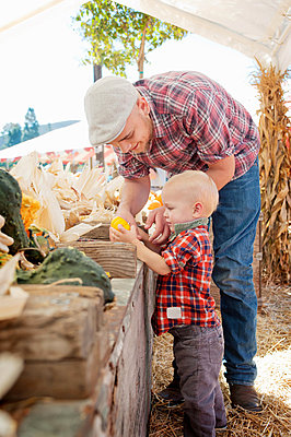 Young father and son looking at squashes - p924m825987f by Jade Brookbank