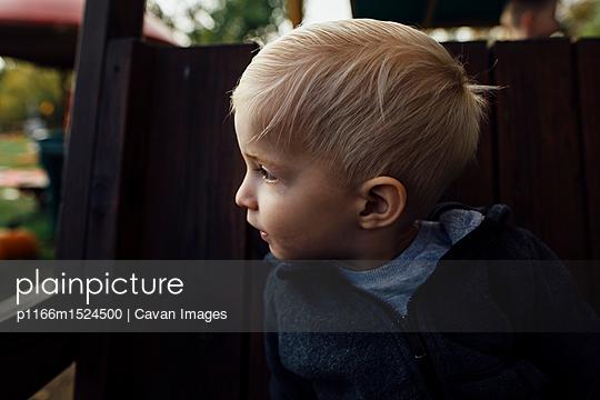 p1166m1524500 von Cavan Images