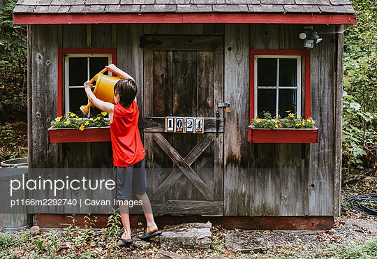 Boy watering flowers in window boxes of shed with big watering can. - p1166m2292740 by Cavan Images