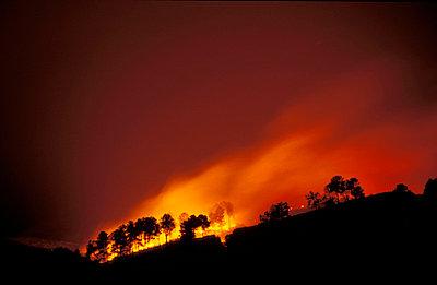 Waldbrand in Portugal - p2200273 von Kai Jabs