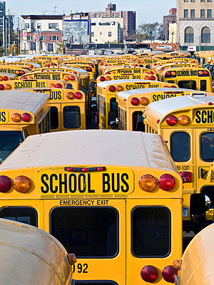 School buses - p4902791 by Jan Mammey