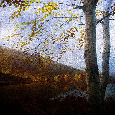 Diorama - p4150765 von Tanja Luther
