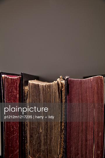 Altes Buch - p1212m1217235 von harry + lidy