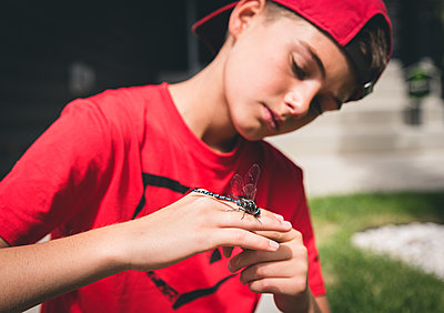 Close up of boy examining a dragonfly that he is holding on his hand. - p1166m2137850 by Cavan Images