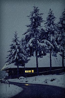 Schwarzwaldhaus - p3180424 von Christoph Eberle