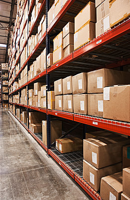 Cardboard boxes on shelves in warehouse - p555m1453785 by Spaces Images