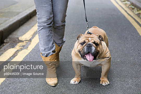 Bulldog and owner - p9249533f by Image Source