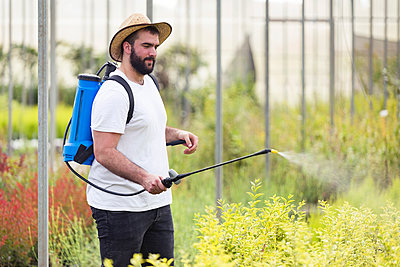 Young man spraying herbicide on plants in the greenhouse - p300m2132050 by Josep Suria